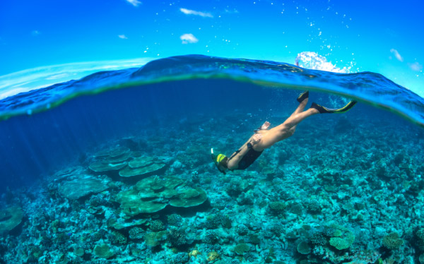 Snorkeling In Tioman