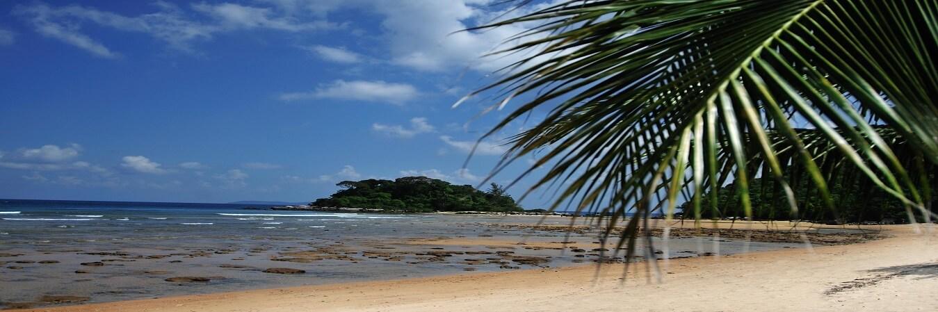 Tioman Island careers-jobs at paya beach resort